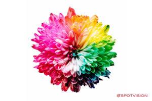 Colori e marketing -Spotvision Asti
